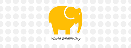 World Wildlife Day Facebook Cover Template