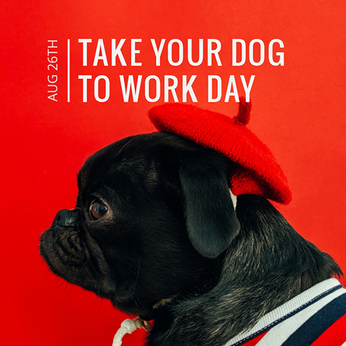 Take Your Dog to Work Day Blog Graphic Medium Template