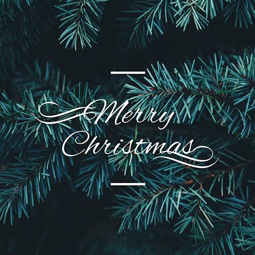 Merry Christmas Template