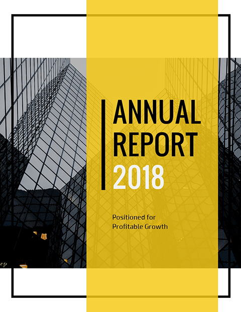 Annual Report 2018 - Positioned for Profitable Growth Template