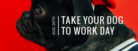 Take Your Dog to Work Day Facebook Cover Template