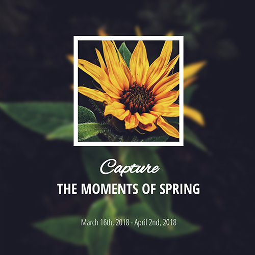 Spring Time Template