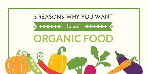 Organic Food? Template