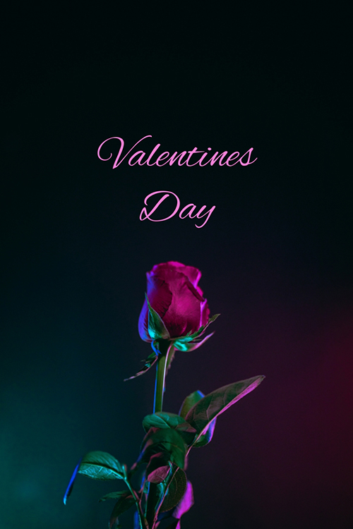 Valentines Day Blog Graphic Large Template