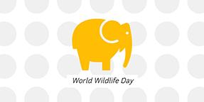 World Wildlife Day Twitter Post Template