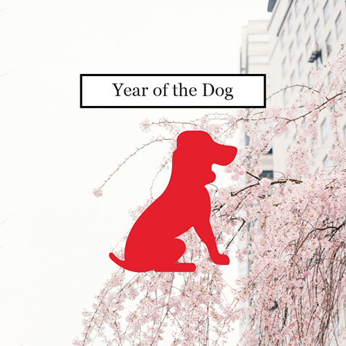 Year of the Dog Blog Graphic Medium Template
