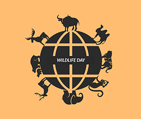 Wildlife Day Facebook Post Template