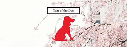 Year of the Dog Facebook Cover Template