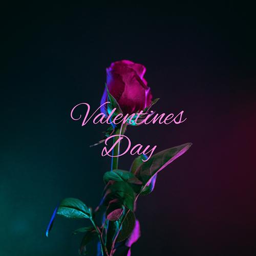 Valentines Day Blog Graphic Medium Template