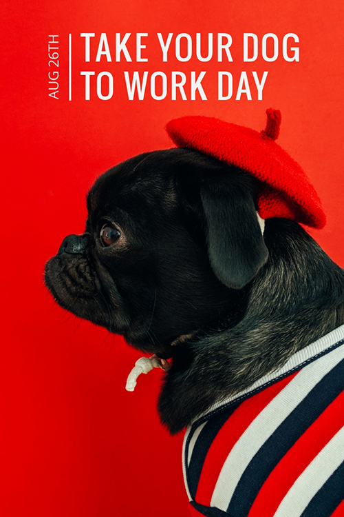 Take Your Dog to Work Day Blog Graphic Large Template