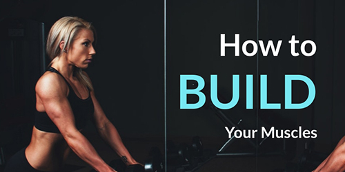 Build Muscles Template