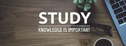 Study Template