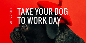 Take Your Dog to Work Day Twitter Post Template