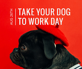 Take Your Dog to Work Day Facebook Post Template