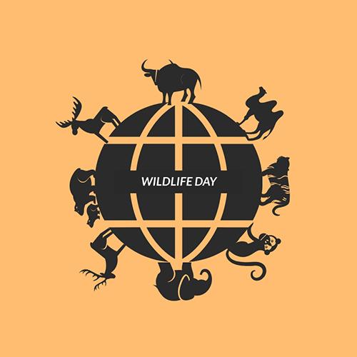 Wildlife Day Blog Graphic Medium Template