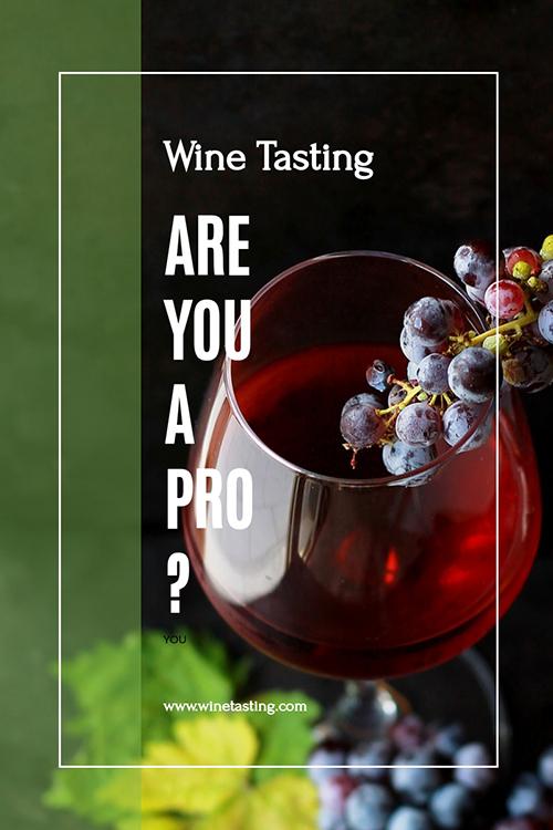 Wine Tasting Template