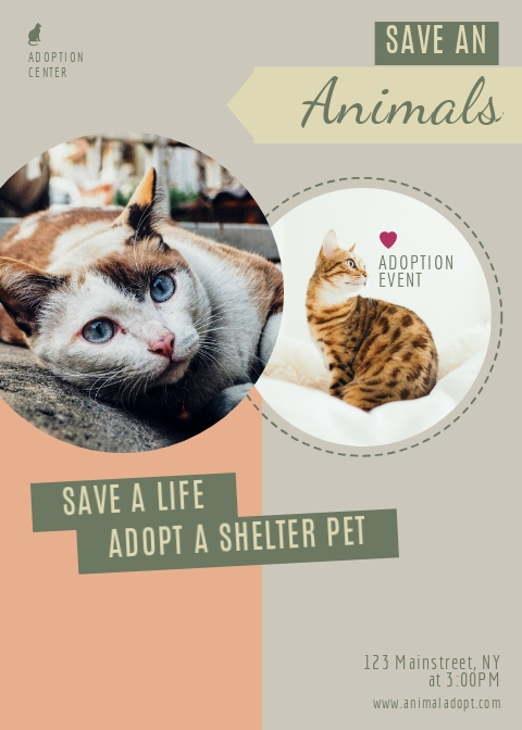 i_Adoption-Event_full Veterinary Newsletter Templates on veterinary medical form template, veterinary newsletter ideas, veterinary referral form template, veterinary new client form template, veterinary job application template, we love your pets template,