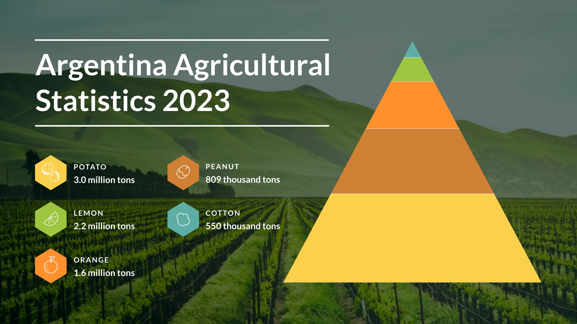 Agricultural Statistics - Pyramid Chart Template