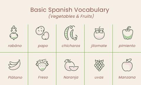 Basic Language Vocabulary Flashcard Template