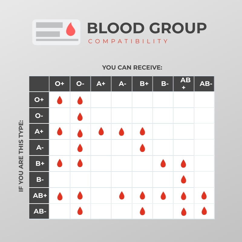 Blood Group Compatibility Pictograph Square Template