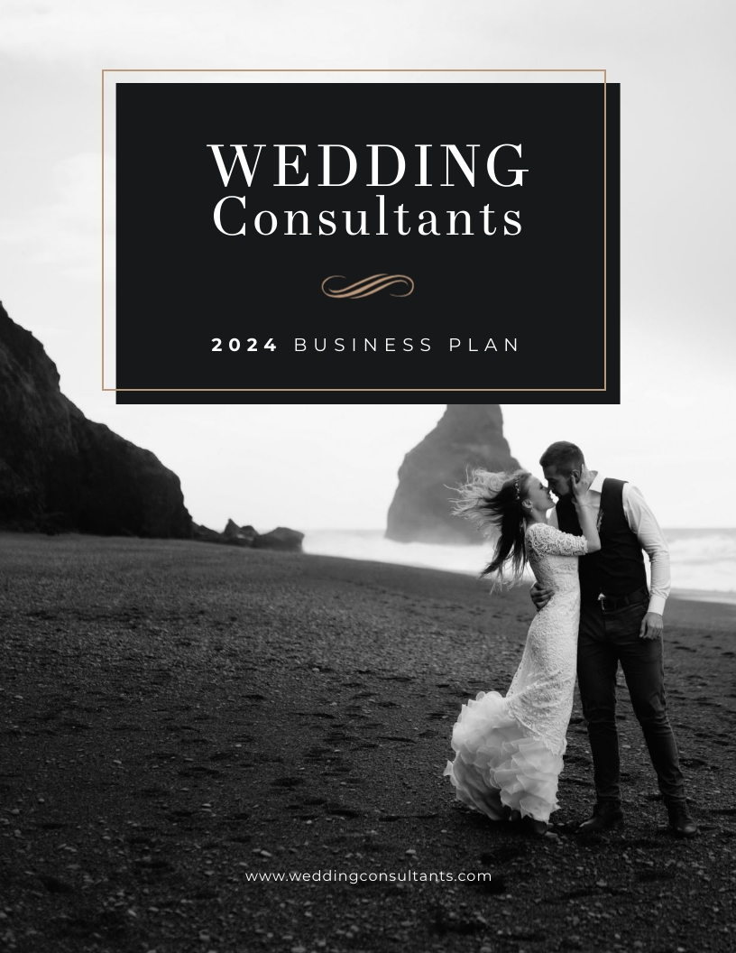 Consulting - Business Plan Template