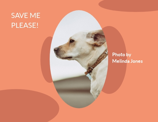 Dog Nonprofit - Postcard Template