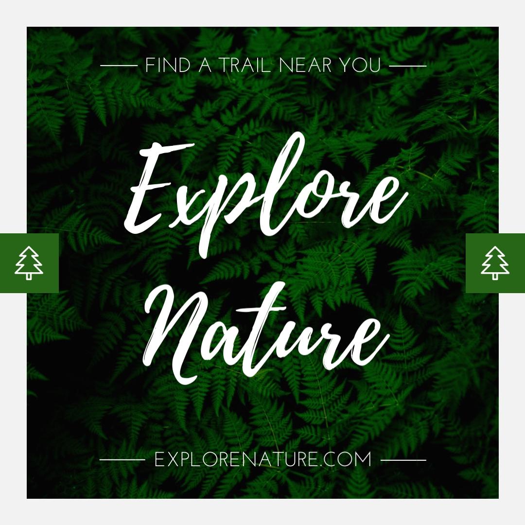 Explore Nature Animated Square Template