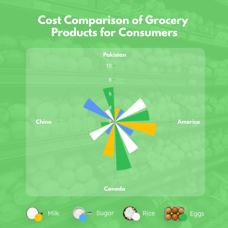 Grocery Products Polar Area Chart Square Template