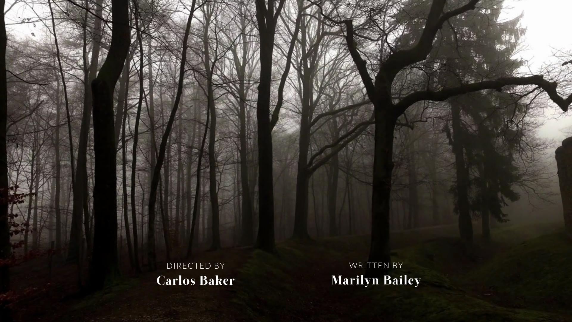 Horror Film - Credits Video Template