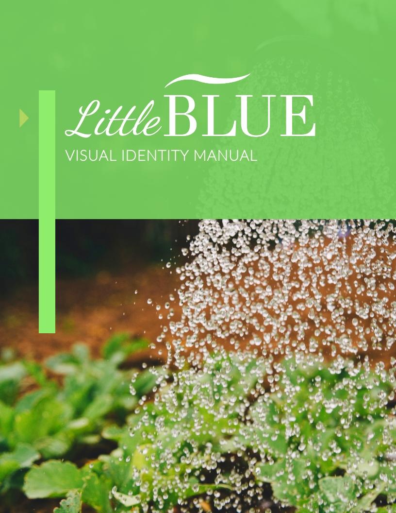LittleBlue - Brand Guidelines Template