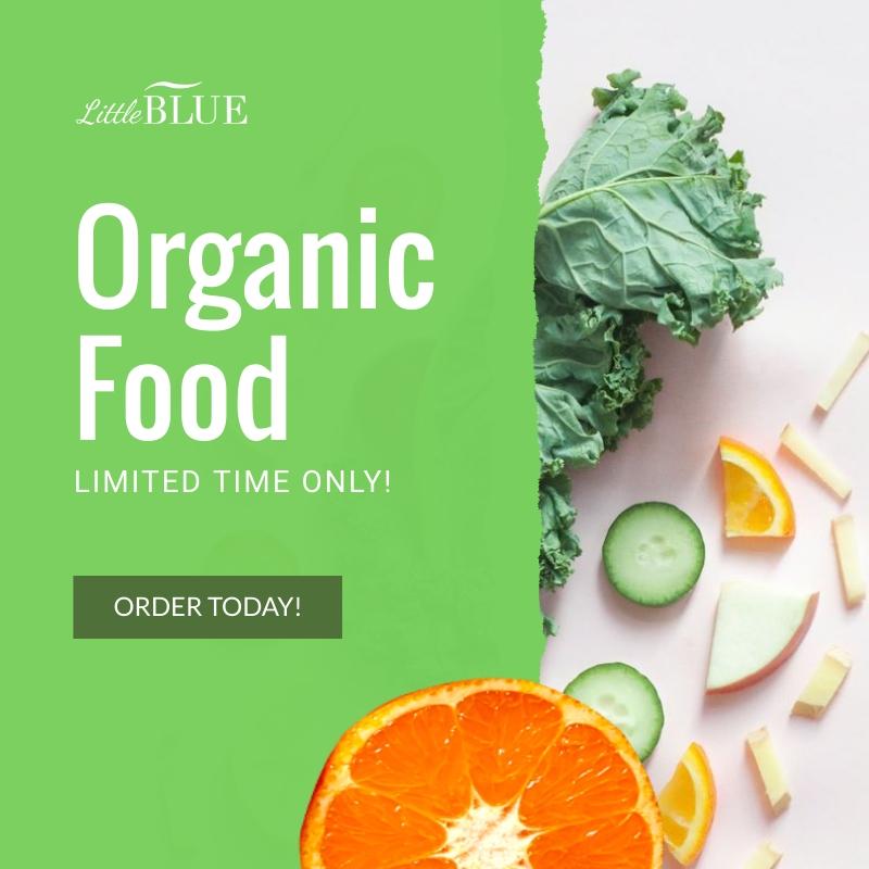 LittleBlue Organic Food Blog Graphic Medium Template