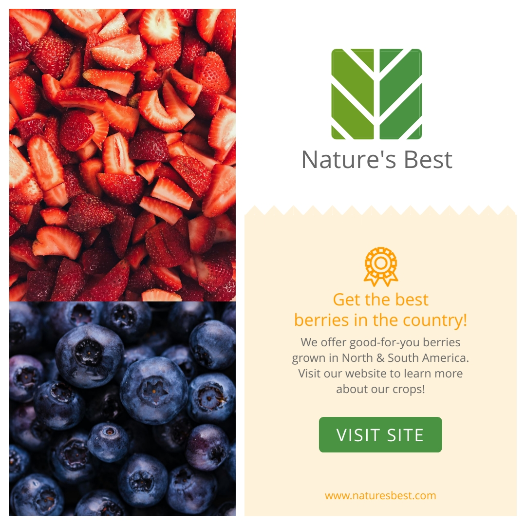 Natures Best Berries Animated Square Template