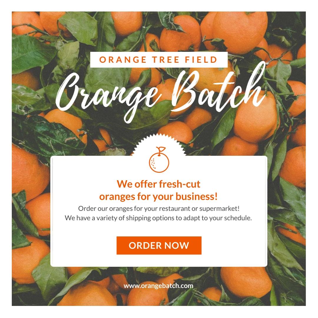 Orange Fields - Instagram Post Template