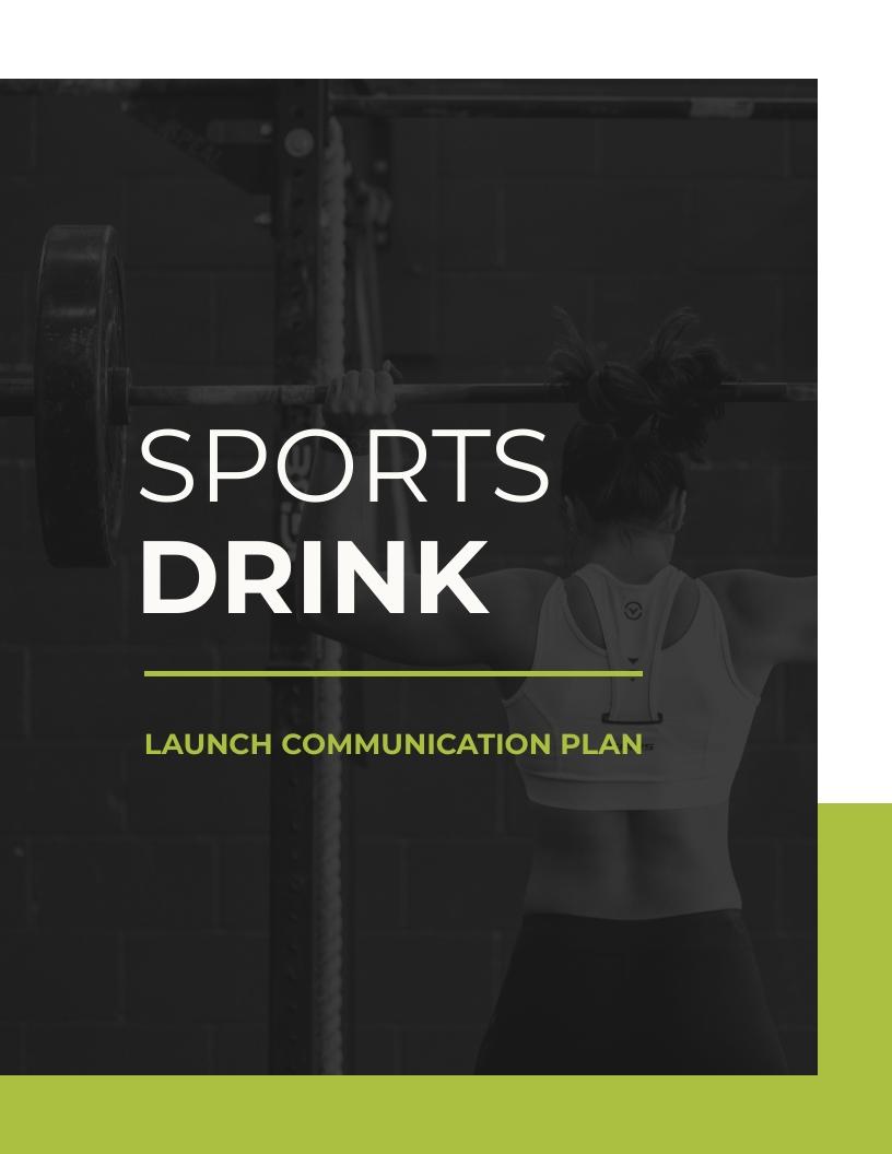 Project Launch - Communication Plan Template