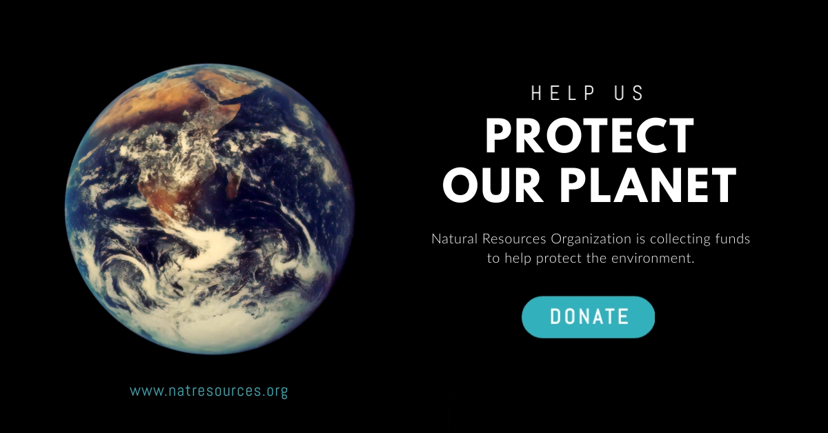 Protect Our Planet Earth Facebook Ad  Template