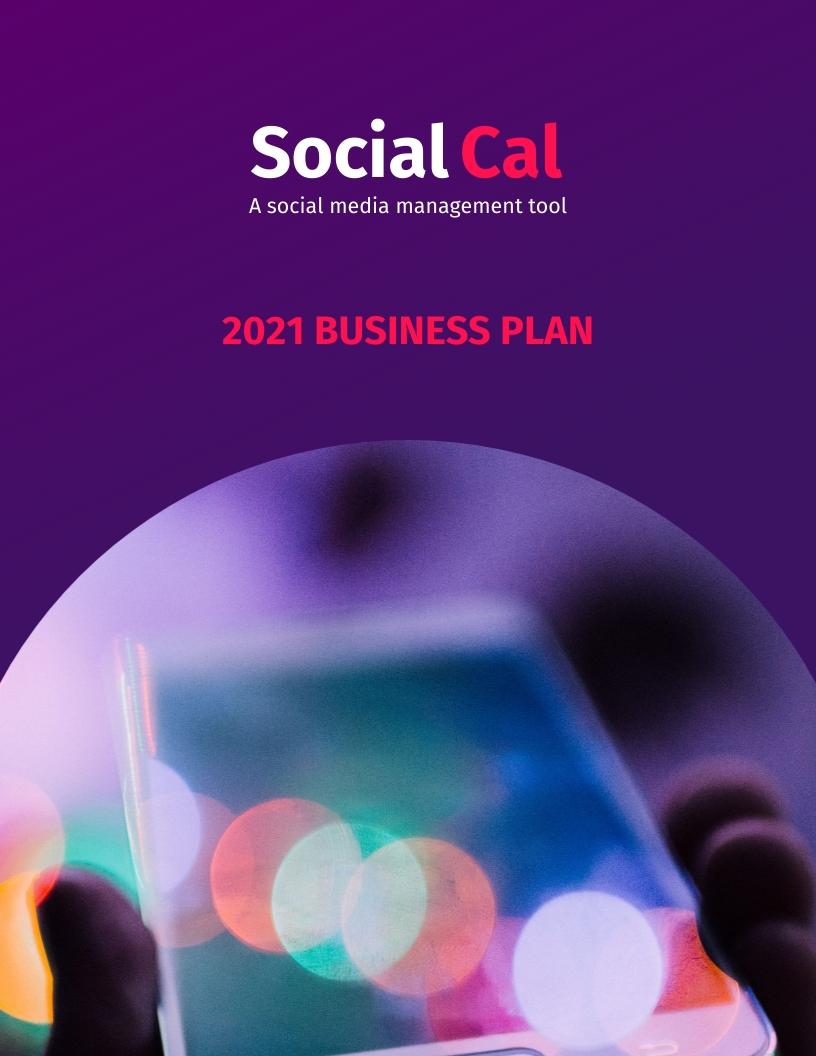 SaaS - Business Plan Template