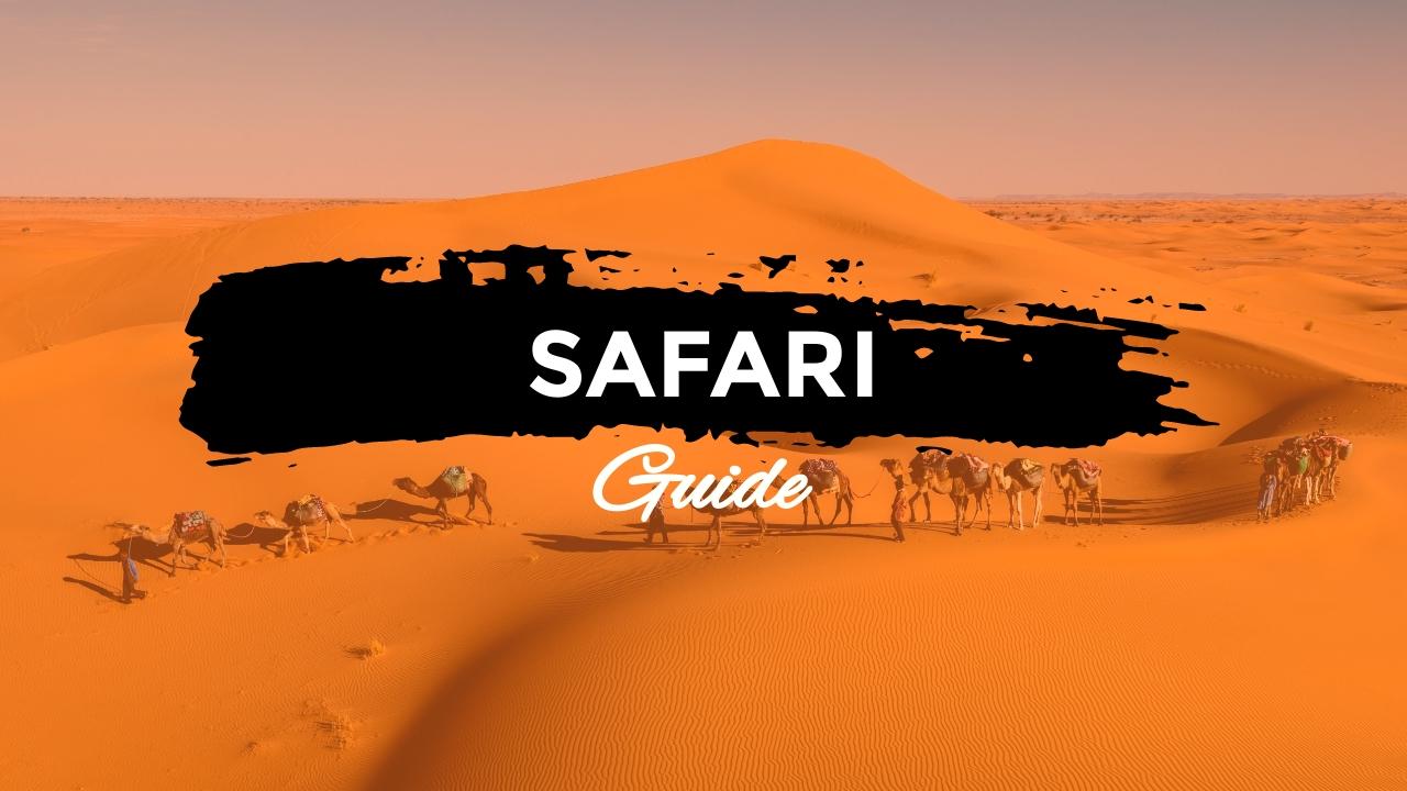 Safari Guide Youtube Video Cover Template