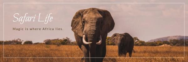 Safari Life Email Header Template