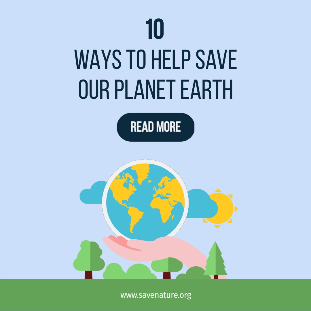 Save the Planet Square Template