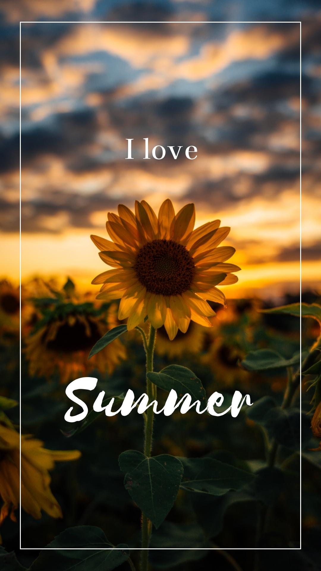 Sunflower Phone Wallpaper Template