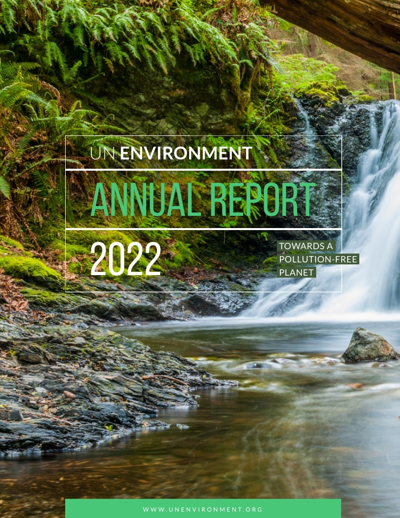 UN Environment - Annual Report Template