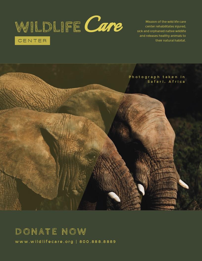Wildlife Care Center - Flyer Template