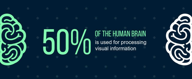 Brain and Visual Processing - Infographic Template