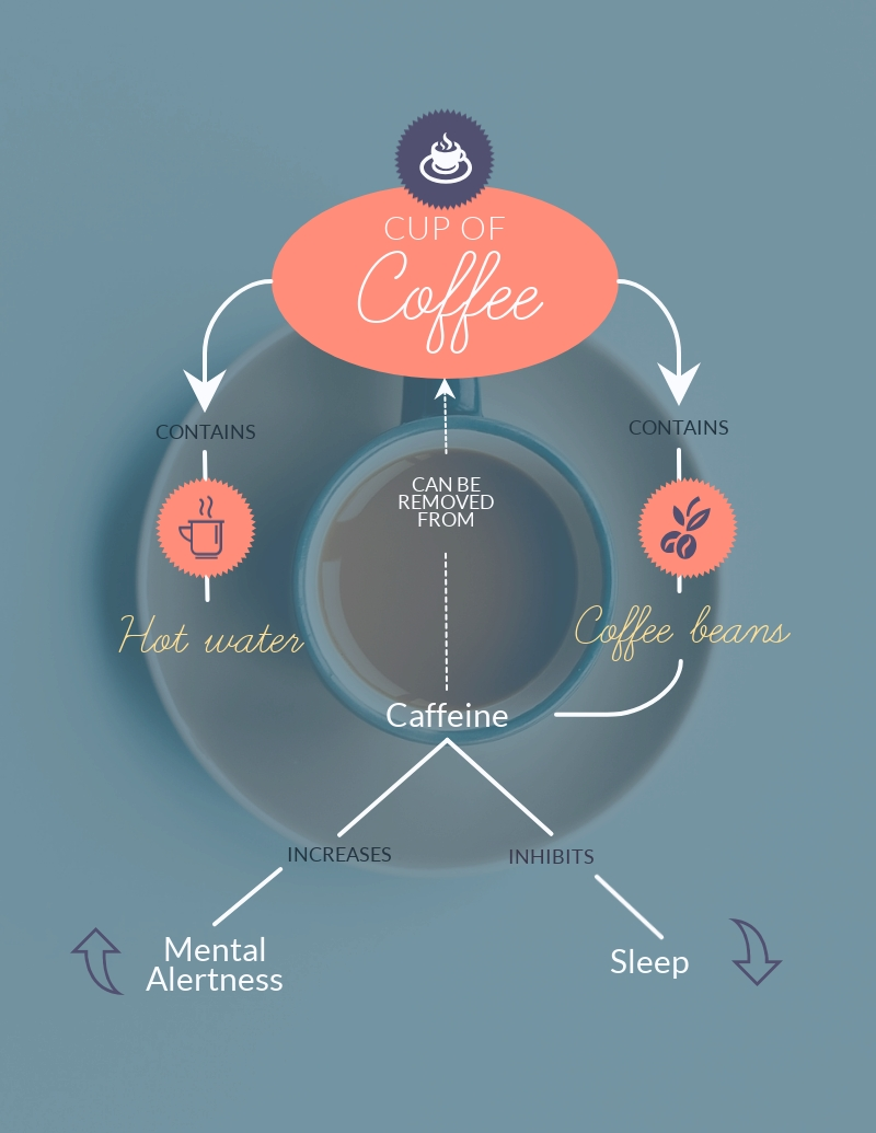 Coffee Concept Map - Infographic Template
