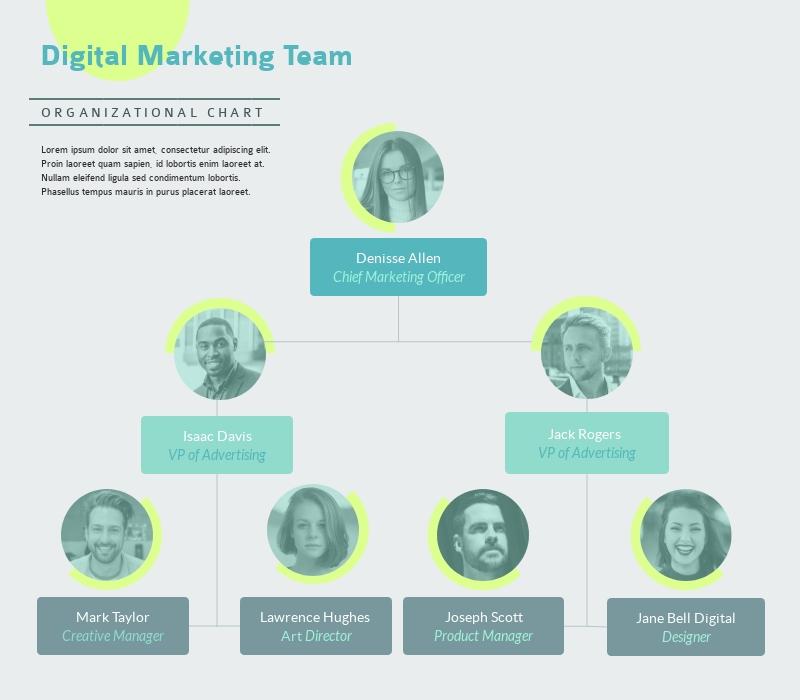 Digital Marketing Team - Infographic Template