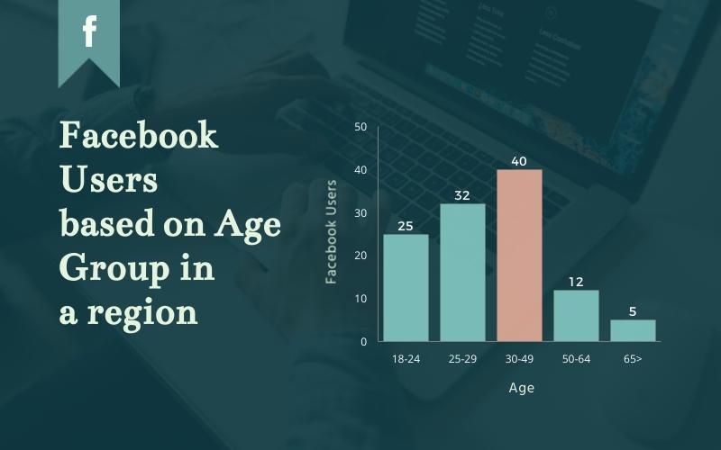 Facebook Demographics Histogram - Infographic Template