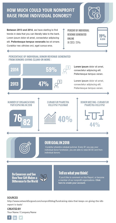 Non-Profit Fundraiser - Infographic Template