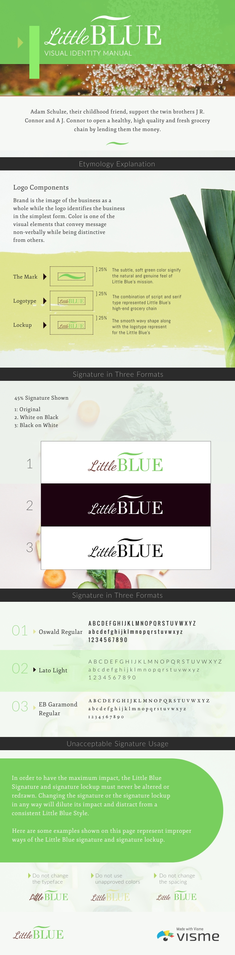 Health Food Company Brand Guidelines - Infographic Template