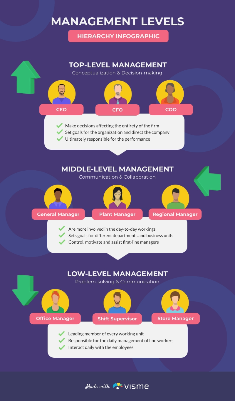 Management Levels Hierarchy - Infographic Template