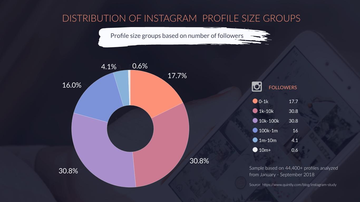 Instagram Profile Size Group Pie Chart Template Visme